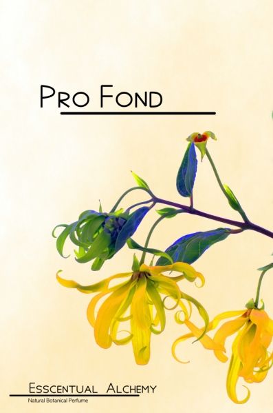 Pro Fond natural botanical perfume by Esscentual Alchemy